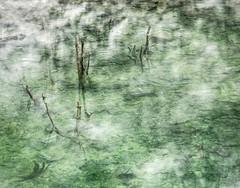 P7111683 (kate stringer) Tags: dinorwic wales