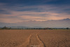 A crop has passed (Mariano Colombotto) Tags: aguilares tucuman argentina crop sugarcane landscape field hills cerros paisaje travel cielo sky clouds nubes autofocus infinitexposure ngc