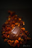 Chocolate, My Sweet Weakness 7 (Alec Lux) Tags: cacao candy chocolate cocoa delicious dessert food foodphotography pralines small sweet sweetfood tasty tastyfood waregem vlaanderen belgium be