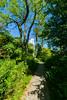 Prequ'ile Lighthouse Path (matthewstrickland2) Tags: lighthouse paths presquileprovincialpark provincialparks presquile