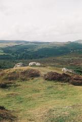 Dartmoor 3 (avenwildsmith) Tags: film 35mm nature devon countryside landscape analog analogue kodak retinette 1b grain england britain moorland moor dartmoor wild wilderness 35mmfilm kodakretinette1b