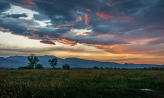 after the storm (andy_8357) Tags: landscape boulder colorado field grass foothills sunset beautiful orange blue sky sony a6000 e pz 1650mm sel1650 selp1650 trees grain bin storage after storm rich ilce6000 6000 nexilce mirrorless mountains fresh air alpha