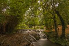 La magia del bosque. (Amparo Hervella) Tags: monasteriodepiedra zaragoza españa spain agua río cascada paisaje naturaleza color árbol largaexposición d7000 nikon nikond7000 comunidadespañola