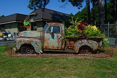 Truck Load of Plants (davidwilliamreed) Tags: old rusty crusty metal chevy chevrolet truck plants rust grunge decay patina gwinnettcounty weathered oxidized oxidation