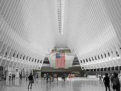 color splash (albyn.davis) Tags: calatrava oculus color splash pop architecture nyc newyorkcity wtc people angles arch ceiling urban city travel