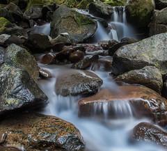 Paradise Creek Waterfall (jeff's pixels) Tags: mountrainiernationalpark mountrainier waterfall paradise creek stream water longexposure landscape washington pacificnorthwest nature rock