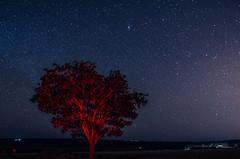 Lua crescente no Goiás (Jacqueline Lisboa) Tags: milky way via lactea sky universe space céu stars estrelas stargazing milkyway nature wire astrometrydotnet:id=nova2212012 astrometrydotnet:status=solved