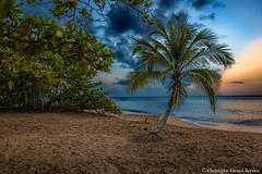 Guadeloupe (Christophe Girard-Berthet) Tags: rifflet basseterre guadeloupe gp sunset couché de soleil paradis tropical antilles france