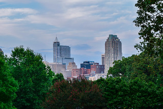Raleigh Skyline from Dorothea Dix