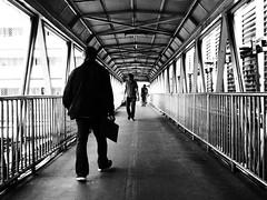 Bangkok - Crossing the road (sharko333) Tags: travel reise voyage asia asien asie thailand bangkok krungthepmahanakhon กรุงเทพฯ street people man olympus em1 bw