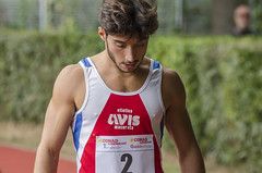 Dennis Marinelli