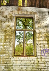 Emptiness (Michelle O'Connell Photography) Tags: abandoned abandonedorphanage window derelict childrenshome childrenssanitorium orphanage vandalised nature brokenwindow michelleoconnellphotography
