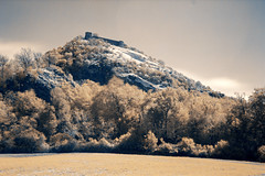 Winter is coming (raffaella.rinaldi) Tags: ir 720 nm infrared long exposure rocca maioletto italy valmarecchia fortress trees yellow white nopeople landscape