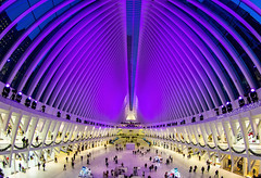 Holiday lights inside the Oculus transportation hub. #2 (千杯不醉的 drunkcat) Tags: worldtradecenter pathtrain oculus