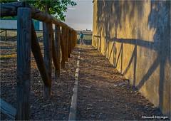 Sombras / Shades (Manuel Moraga) Tags: manuelmoraga sombras lineas hombre atardecer cisneros palencia castillayleón españa