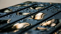 After the rain... (Kerstin Winters Photography) Tags: minimalism minimal abstract farben colors rain outdoor raindrops regentropfen regen wasser d7200 nikkor nikondigital nikondsl flickrnature flickr nahaufnahme macro closeup details detail golden sunrise waterdroplet tropfen wassertropfen water droplets