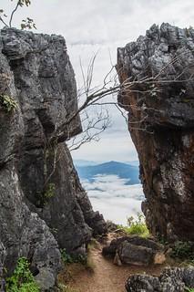 doi pha tang - thailande 28