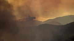 7P7A6695 (Mark Ritter) Tags: rose fire elsinore lake brushfire flames dc10