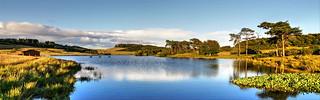 Knapps Loch,Kilmacolm,Inverclyde.....