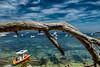 Sainte-Marguerite (mirko.borgmann) Tags: ocean mittelmaeer fz1000 colours lumen lux luz light luce licht свет lumière φωσ silhouette siluette silueta schattenriss controluce contrejour contrallum contraluz podświatło gegenlicht backlight onwhite aufweissfreigestellt surfondblanc onblack aufschwarzfreigestellt surfondnoir nature sunset water sky landscape blue red beach portrait night topf25 2549 faves