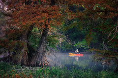 Tranquillity Island Kerrville Kayak