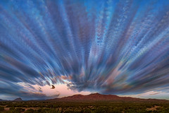 Clouds (inlightful) Tags: clouds sky outdoors nature morning sunrise bird flying timestack