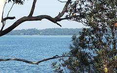 16 Greville Avenue, Sanctuary Point NSW