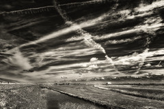 Air Traffic (Alfred Grupstra) Tags: nature blackandwhite ruralscene landscape outdoors field cloudsky agriculture sky scenics nopeople farm nonurbanscene meadow cloudscape summer land hill grass landscaped condens dike petten nl