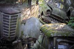 (Ale Urbex) Tags: urbex urbanexploring urbexeurope abandoned abandonedplaces aleurbex