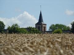 The heat above a field blurs a church behind