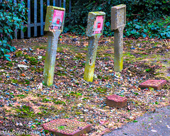 Gas Headstones (M C Smith) Tags: pentax k3ii fence path railings verge gas posts markers ivy grass signs covers concrete