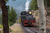 Shay Power (Jake Branson) Tags: train railroad shay steam locomotive colorado co georgetown loop mountain