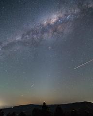 Pillar of light (nightscapades) Tags: airglow astronomy astrophotography galacticcore illawarra kiama milkyway night nightscapes saddlebackmountain sky southcoastnsw stars zodiacallight