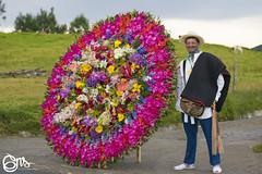 Feria de Flores 2017 By GNS_0018 (iamgns) Tags: silleteros medellin feria flores desfile retratos photography portrait photographer beautiful flowers art cultura culture nikon 50mm 18 iamgns gente people tradición