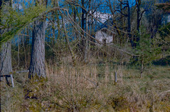 Frühlingszeit - Springtime (skorzak.E.T.) Tags: kodakgold kodak retinette film analog tirol tyrol frühling spring landscape landschaft