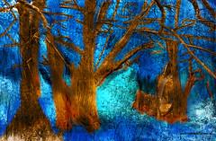 DENIM BLUE FOREST. (Viktor Manuel 990.) Tags: blue forest azul bosque surrealism surrealista digitalart artedigital querétaro méxico victormanuelgómezg textures texturas trees painting pintura