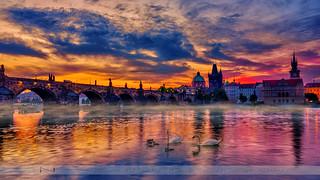 The Fairy Tale City