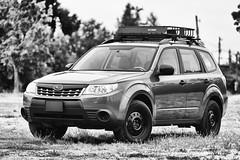 2012 Subaru Forester 2.5x (donaldgruener) Tags: subaru forester subaruforester sh 2012 25x bw bnw blackandwhite
