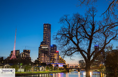 0J4A1219 (Indigo Photography) Tags: sunet yarrariver citylights cityofmelbourne cities worldcities travel travelphotography ilovemelbourne victoria seeaustralia