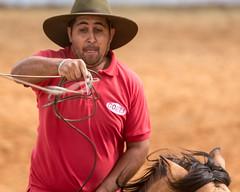 Nó (Ars Clicandi) Tags: brazil brasil parana jaboti prova do laço comprido peao peão boiadero boiadeiro cowboy paraná br