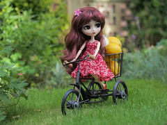 R is for red and riding (Little little mouse) Tags: pullip bloodyredhood brh tulip obitsusbhs27cmbody homemadedress