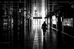 Hall (CoolMcFlash) Tags: hall person bnw blackandwhite blackwhite bw street streetphotography candid silhouette light hauptbahnhof vienna austria reflection modern halle sw schwarz schwarzweis kontur licht wien österreich spiegelung fotografie photography canon eos 60d