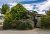 Macraes Flat, Otago (flyingkiwigirl) Tags: bridge church fence haasteagle historic hyde macraes macraesflat mine otago otagorailtrail pigskin rockpillarrange sculpture stanleyshotel taieririver flat