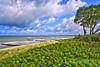 2  Inselweite (coaster45) Tags: ostsee dars darss ahrenshoop strand dünen reetdach reetdachhaus
