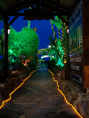 Illuminated garden in Torremolinos (STEHOUWER AND RECIO) Tags: costadelsol garden illuminated lights beach perspective trees light little kleine tuin verlicht verlichting beelden evening blue green gold torremolinos spain path statue statues elveleroplaya restaurant andalusia leaves lamp