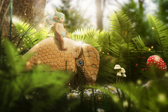 the smurf and the armadillo (olgavareli) Tags: smurf miniature baby silicone fantasy armadillo elf forest magic olga vareli photomanipulation trolled troll