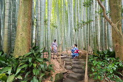 2 Lovers  Hōkoku-ji ..Temple du bambou Kamakura (geolis06) Tags: geolis06 asia asie japan japon 日本 2017 kamakura hōkokuji 報国寺 bouddha buddha olympuspenf olympusm918mmf4056 temple bouddhisme zen garden