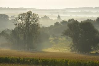 Ambiance de matin brumeux