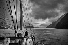 Wish You Were Here (Anna Kwa) Tags: doubtfulsound patea southwest fiord fiordland soundofsilence 42 kilometres doubtfulharbour captaincook fiordlandnationalpark southisland newzealand realjourney navigator cruise annakwa nikon d750 afsnikkor24120mmf4ge my wishyouwerehere always sea mountains darkest emotion bewithyou whatmatters seeing heart soul throughmylens voyage discovery seeking travel world omm passenger anywhere storm rain journey wilderness