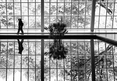 Temple of Dendur II _ bw (Joe Josephs: 3,166,284 views - thank you) Tags: met metmuseum nyc newyorkcity travel travelphotography art arthistory artmuseums culture joejosephs ©joejosephs2017 blackandwhitephotography blackandwhite monochrome ancientegypt artists
